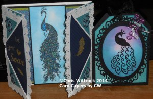 Carol Ann 2014 BD Card 2 Tag and card
